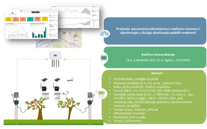 Senzorske mreže